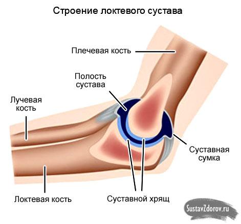 Ссадина локтевого сустава спортивный фиксатор кистевого сустава