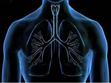 Очень много курила как очистить организм