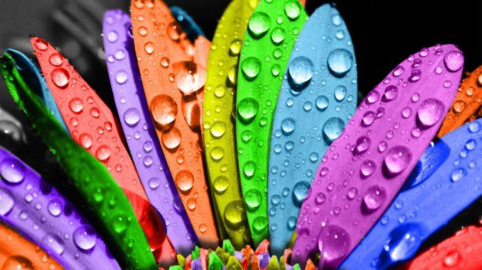 влияние цвета на человека цвета