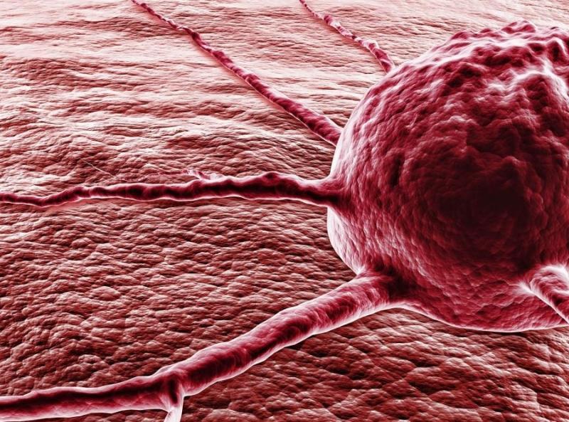 первый признак заболевания рака