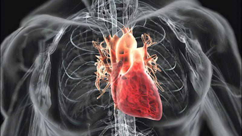 Как сделать нагрузку на сердце