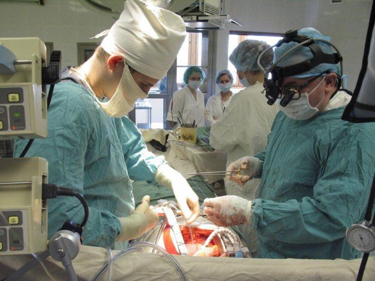 Пересадка почки (трансплантация): операция, где и как делают