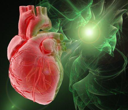 Фракция сердечного выброса норма — Про сосуды