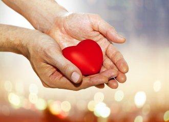 Чем подпитать сердечную мышцу